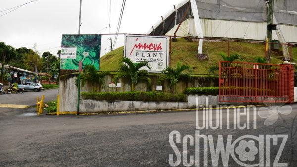 Einfahrt Innovplant Costa Rica
