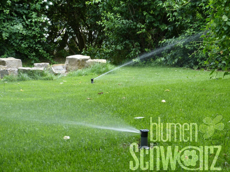 Bewässerungsanlage Planen bewässerungsanlage planen ein kurs für die basics blumen schwarz