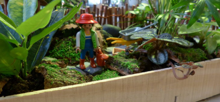 Miniaturgarten: Kurs für Kinder