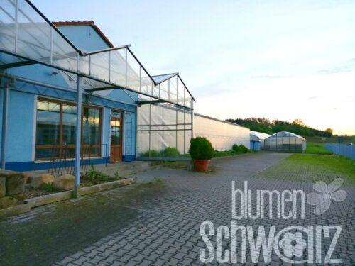 Ihre Landgärtnerei in Rutzendorf