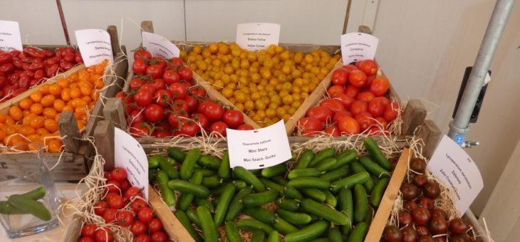 Gemüse-Probiertage 17.-19. August