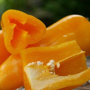 Länglicher Gelber Snackpaprika 'Ariella Midi Yellow'