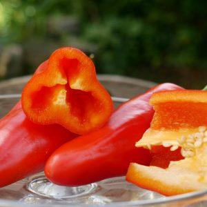 Länglicher Roter Snackpaprika 'Ariella Midi Red'
