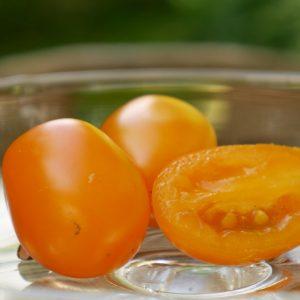 Kirschtomate 'Santorange'  –  Veredelt
