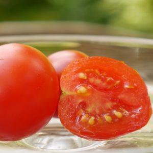 Cherrytomate 'Favorita'  –  Veredelt