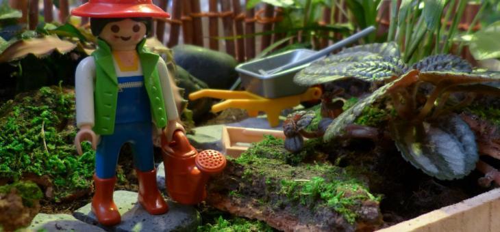 Sommer in der Gärtnerei – für alle die gerne spielen