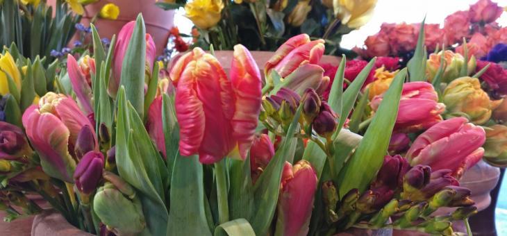 14.2. Valentinstag – Blumen mitten im Winter