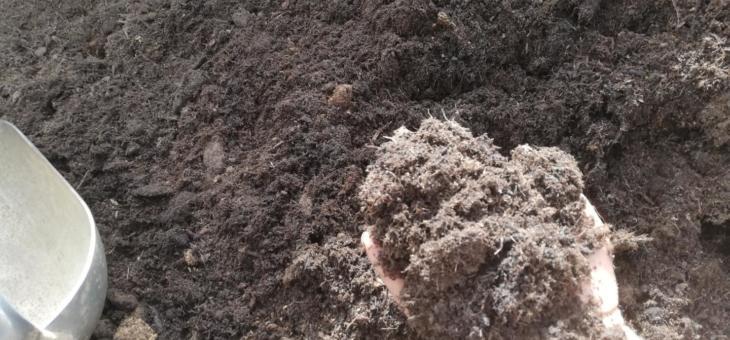 torffreie Erde – Blumen Schwarz Hausmischung