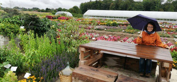 Gärtnersommer: Versuchsfelder – Jungpflanzenlieferanten – Fortbildung